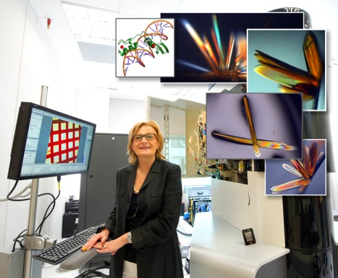 Pic courtesy: NTU The institute will be led by Dr. Daniela Rhodes, a structural biologist of international repute.