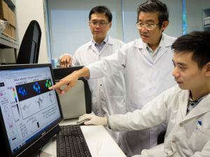 From left: NTU Assoc Prof Andrew Tan, NUS Assoc Prof Vincent Chow and NTU researcher Li Liang discussing the effects of the new antibody. Photo: NTU