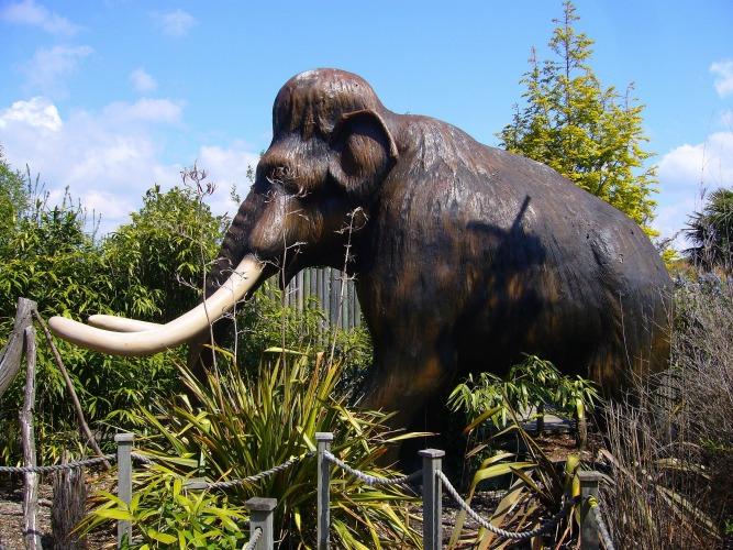 Mammoth model