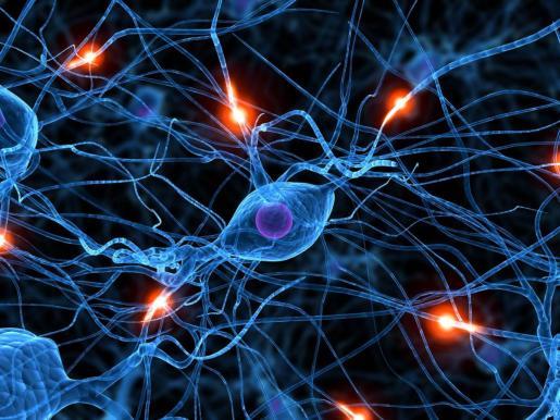 Active neuron -117233961