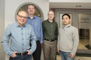 Jan Potempa, Ph.D., D.Sc., David A. Scott, Ph.D., Richard J. Lamont, Ph.D., and Huizhi Wang, M.D., Ph.D. CREDIT: UofL