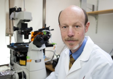 Tim Kamp, professor of medicine and physiology in the School of Medicine and Public Health, Co-director of the UW-Madison Stem Cell and Regenerative Medicine Center.