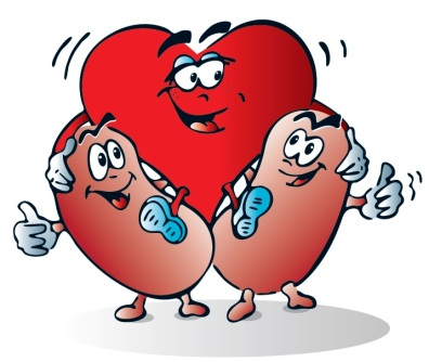 World Kidney Day heart kidneys