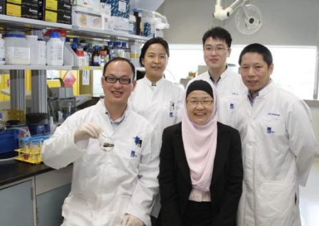 The IBN research team who invented the smart oil-scavenging material (clockwise from bottom left: Dr Changliang Ren, Dr Hong Wu, Dr Jie Shen, Dr Huaqiang Zeng and Prof Jackie Y. Ying). © Institute of Bioengineering and Nanotechnology