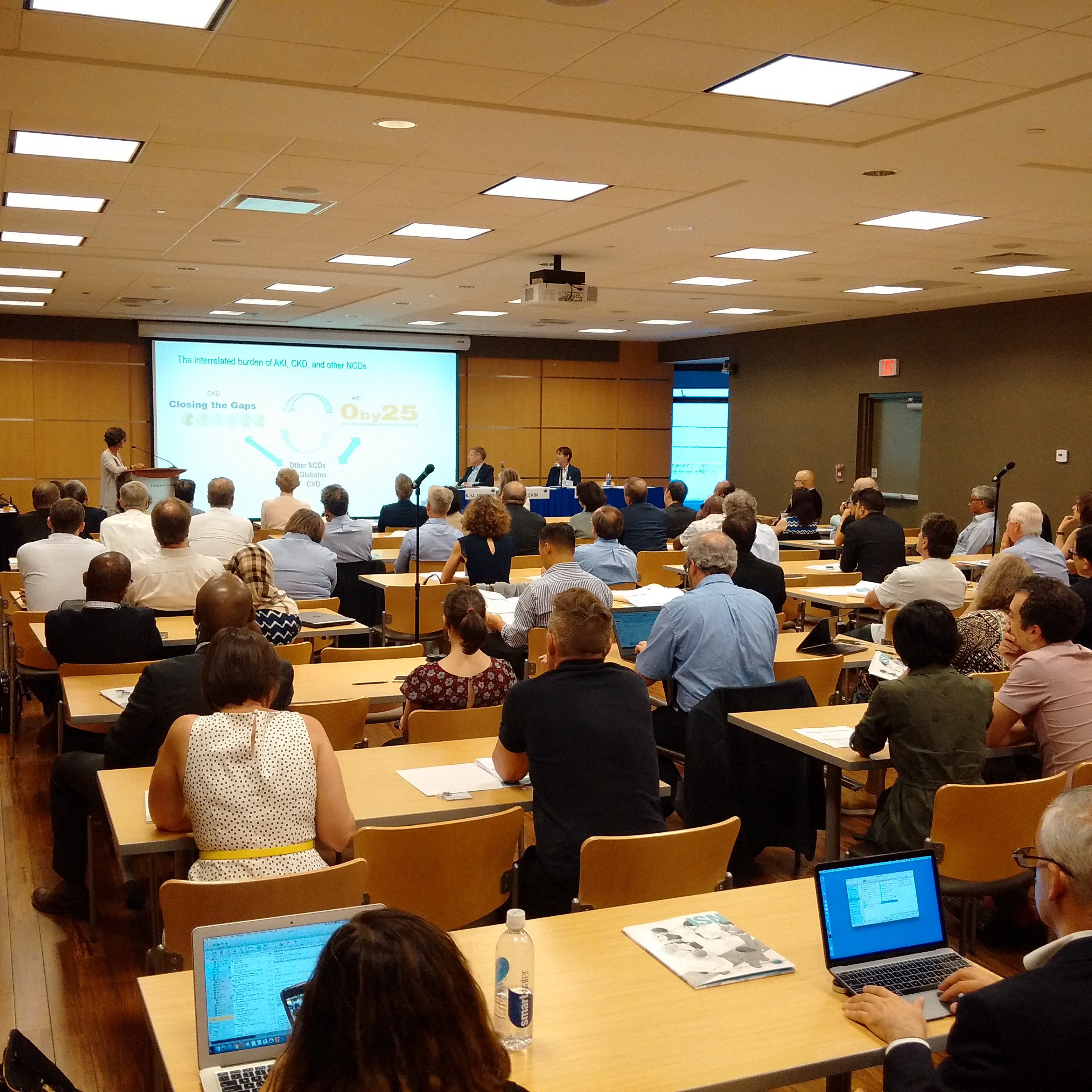 Global experts and leaders devise a new blueprint for kidney care global experts and leaders devise a new blueprint for kidney care malvernweather Images